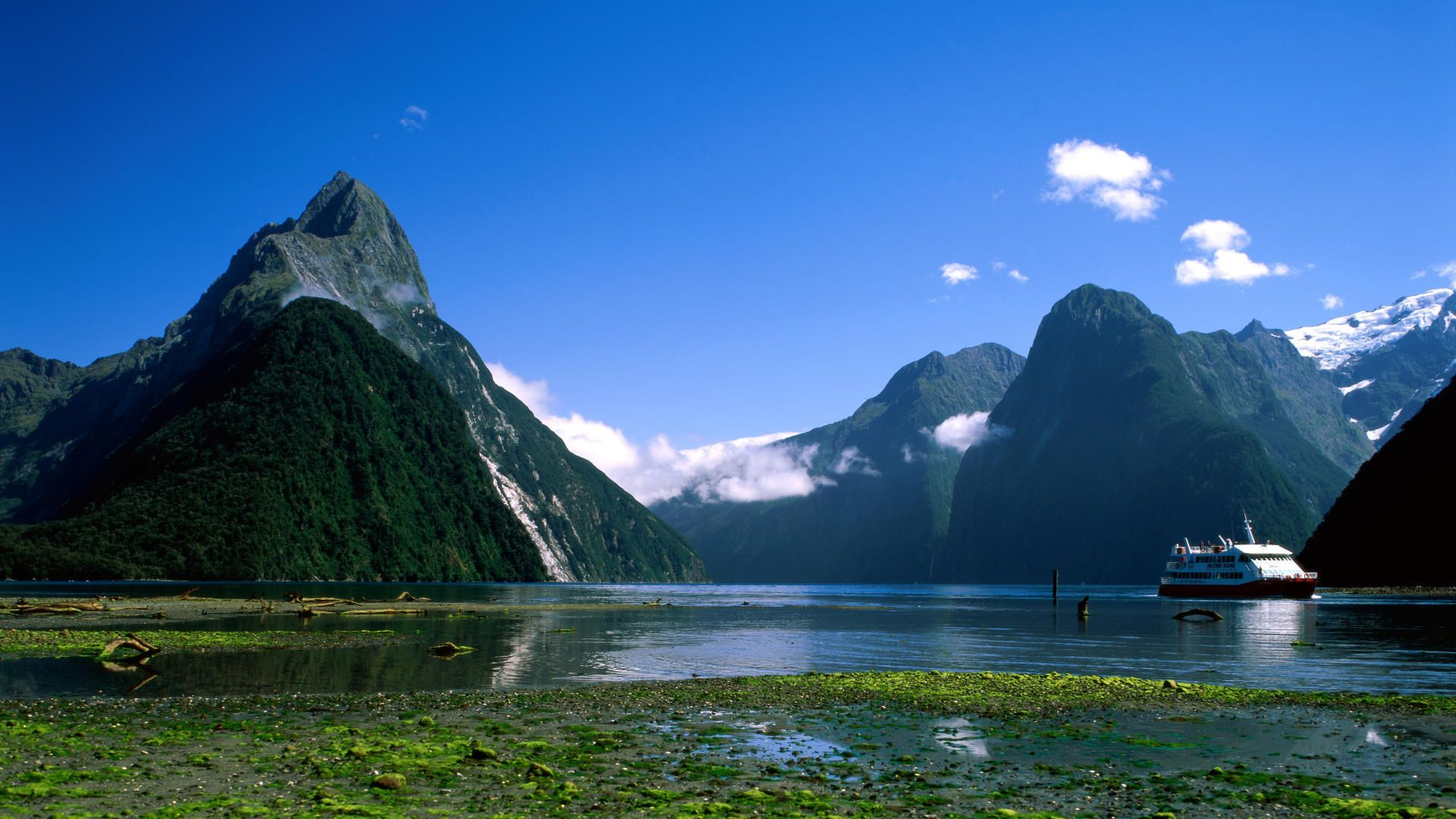 New Zealand, Home of the Middle Earth!