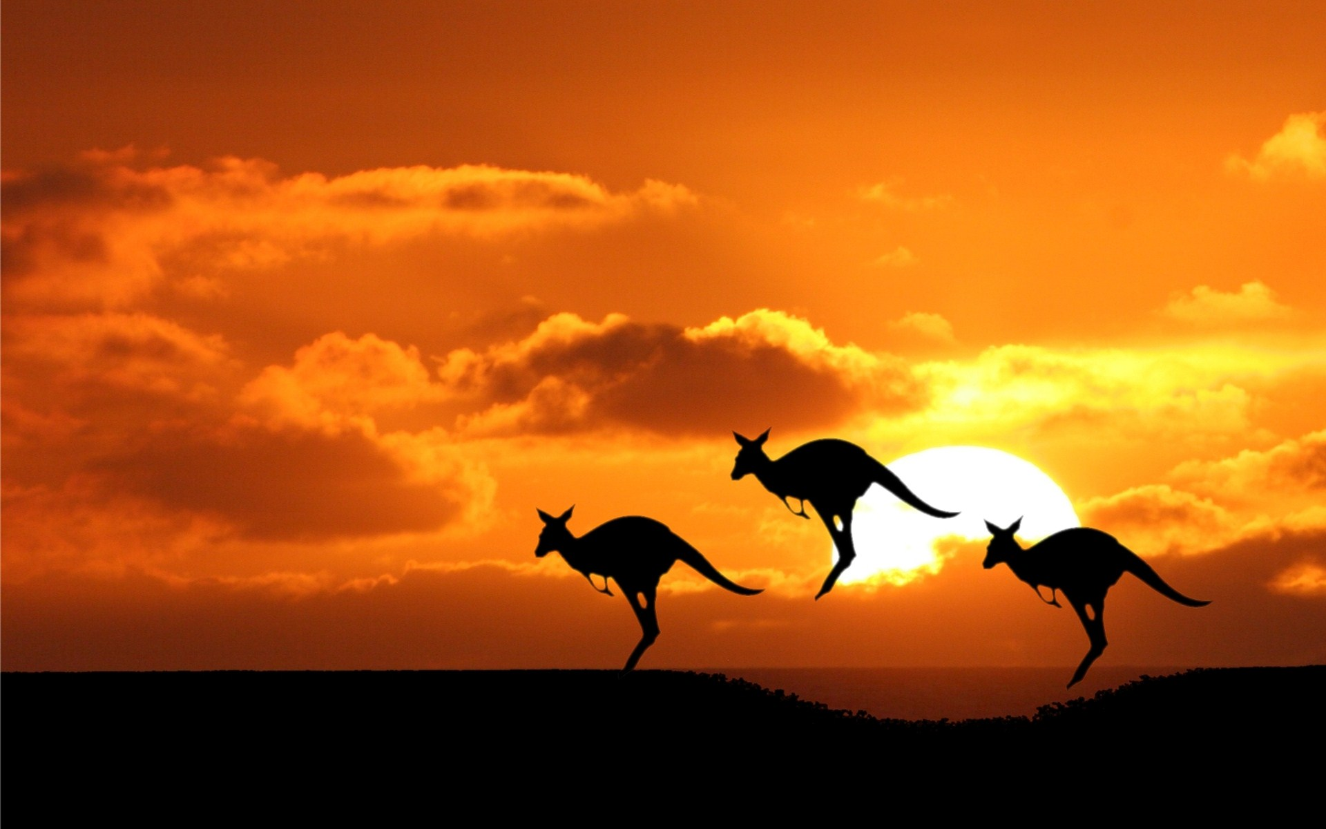 Australia, a Discovery at Every Step!